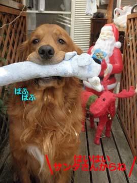 クリスマスプレ