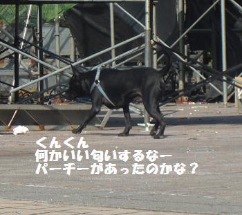 台北2010りえ 039