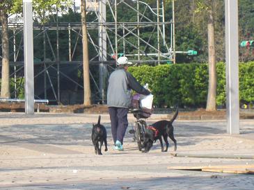 台北2010りえ 040