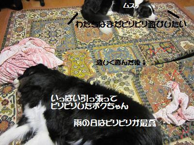 20100706 003