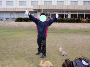 ookunojima1.jpg