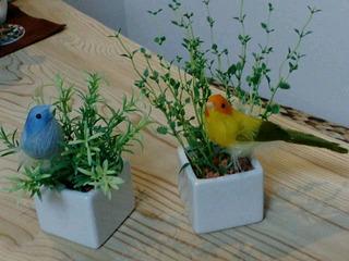 消臭グリーンと鳥