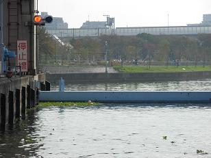 淀川と大川