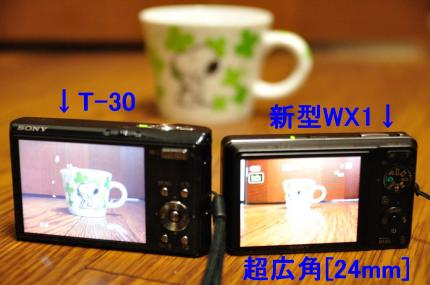 DSC_2350_487.jpg