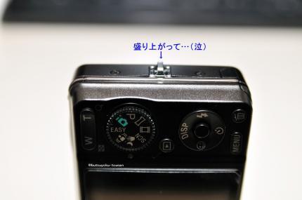 DSC_2518_573.jpg