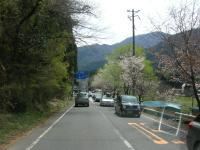 くるま旅319