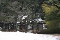 栗林公園003