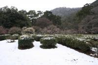 栗林公園014