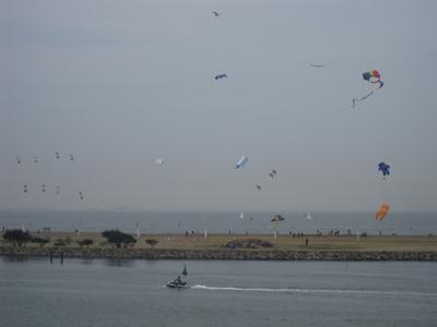 葛西臨海公園の凧