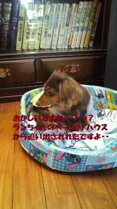 001_20120420135430.jpg