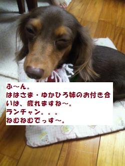 002_convert_20111219194331_20111219212222.jpg