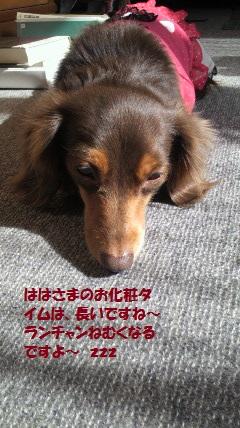 003_20120219002453.jpg
