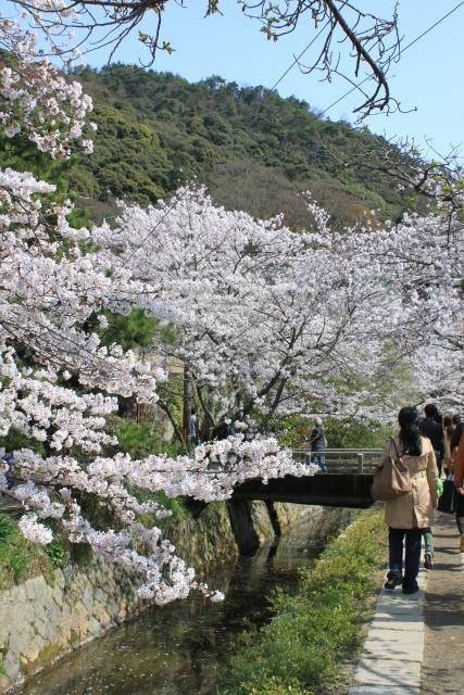 kyoto013.jpg