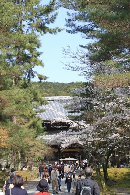kyoto017.jpg