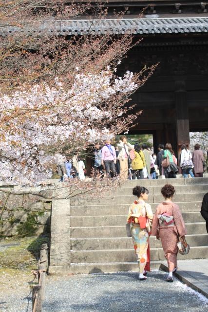 kyoto021.jpg