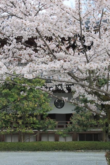 kyoto025.jpg