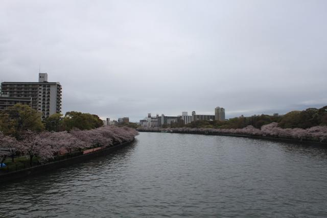 ookawa01.jpg