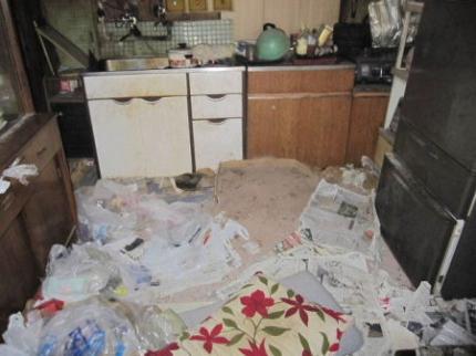 台所にも猫の砂とフン