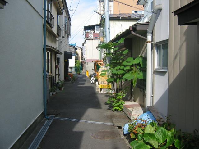 2010_08_09_05.jpg