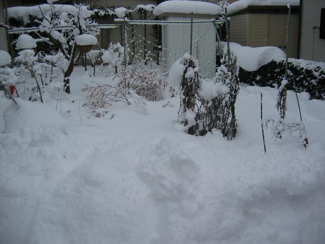 2010_12_27_1.jpg