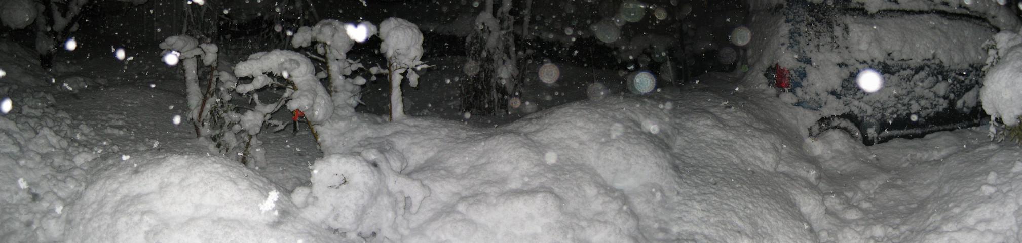 2010_12_31.jpg