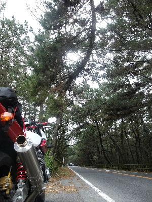 2010_0314バイク0023