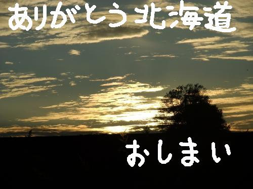 DSCF1761_convert_20101023020806.jpg