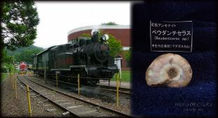 DSCF0109 2010.07.27