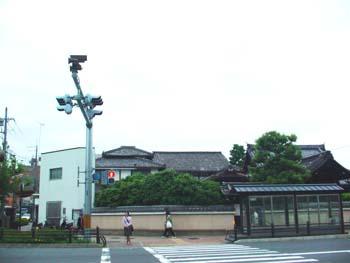 DSC06262.jpg