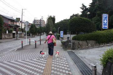 さぁ~頑張って歩こうね