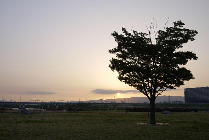 100517-河川敷3