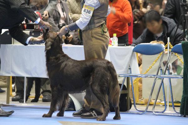 20101219nalu1