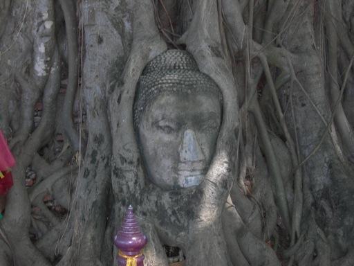 タイ 047