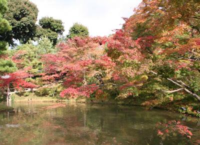 京都2009-016