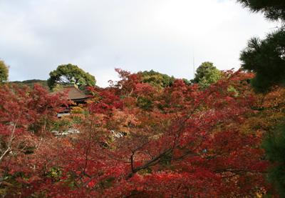 京都2009-019