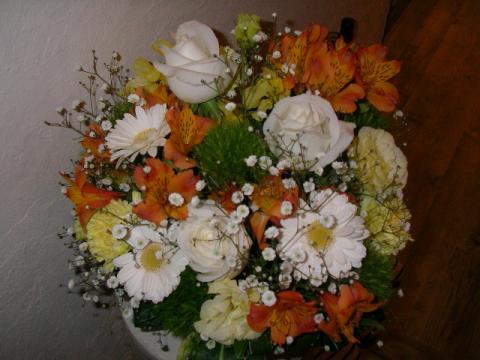 SANY0073_20120302125911.jpg