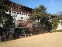 2010年1月28日~30日韓国旅行 076