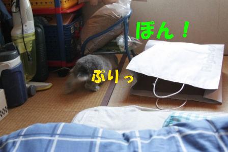 11/1/12/3
