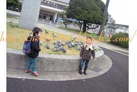 NEC_0744.jpg