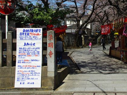 IMGP4696sakura.jpg