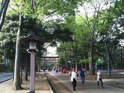 IMG_3463omiyahikawa.jpg