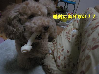 ライアNo4