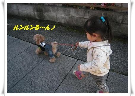 お散歩No4
