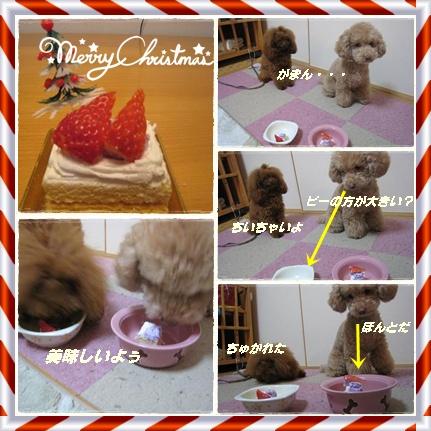ライピーXmasケーキ