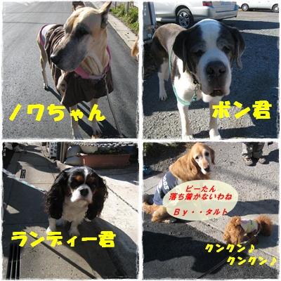 ワンズ軍団No3