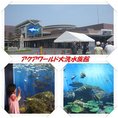水族館。。