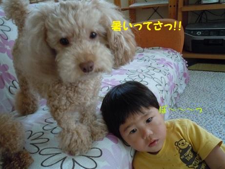 ライア&ゆう君No2