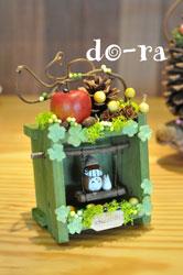 do-ra6