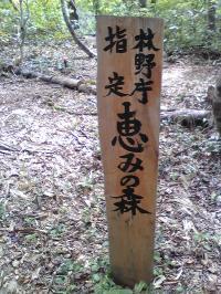 恵みの森 柱_convert_20090928212739