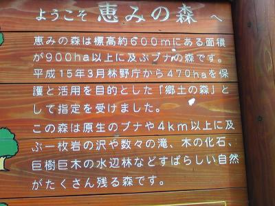恵みの森 入り口看板_convert_20090928222055